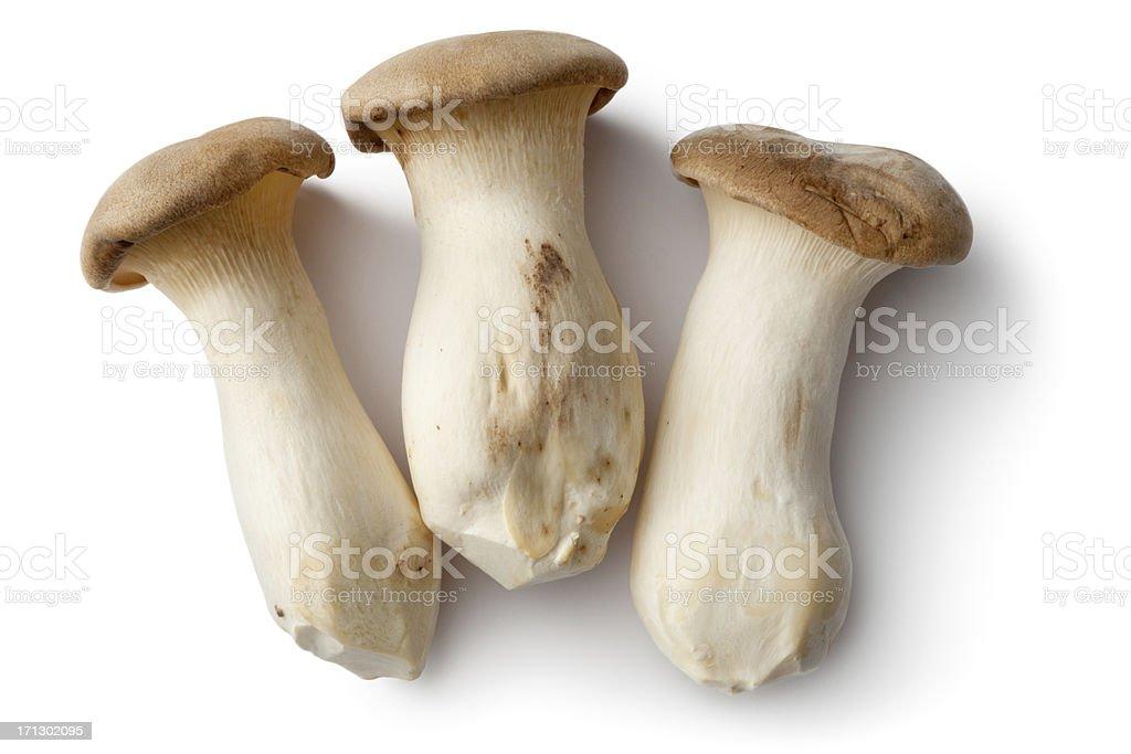 Mushrooms: King Oyster Mushroom stock photo
