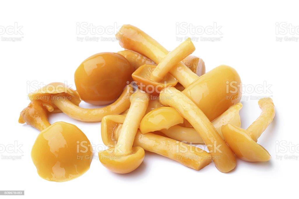 Mushrooms marinaded (agaric honey) stock photo