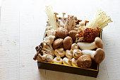 Assorted mushrooms