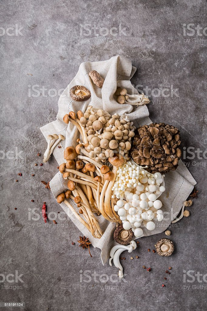 Mushrooms stock photo