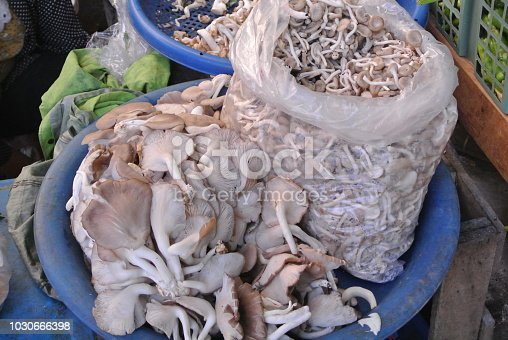 Mushrooms put on sale in the market.