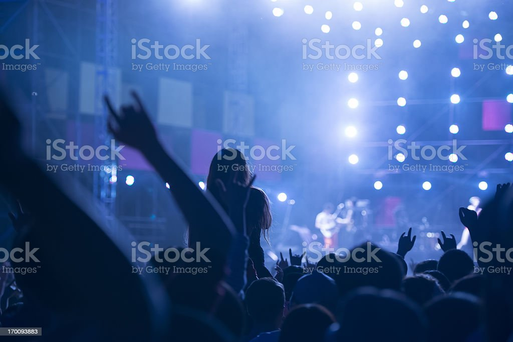 Music Festival royalty-free stock photo