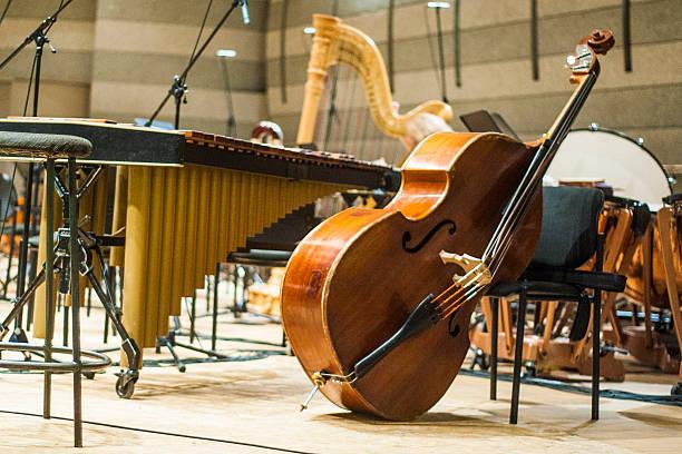 musik-instrument - philharmonie stock-fotos und bilder