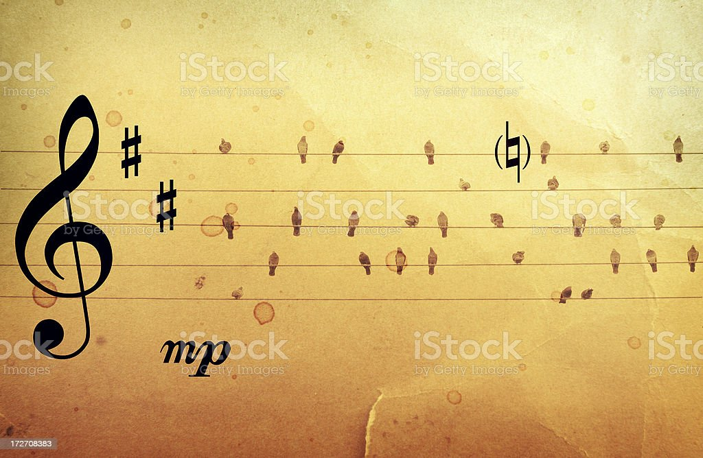 Music is for the Birds royalty-free stock photo