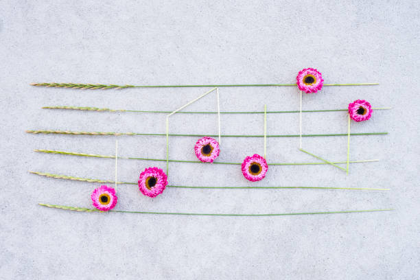 Music notes made of pink strawflowers and wild grass stock photo