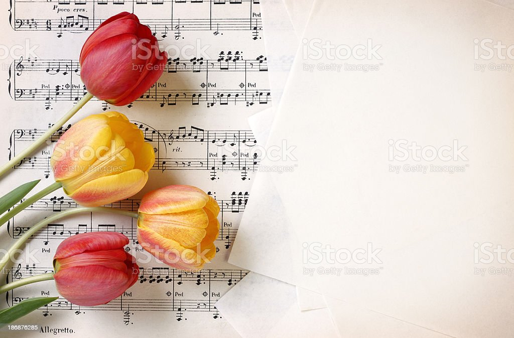 Musical background with flowers stock photo