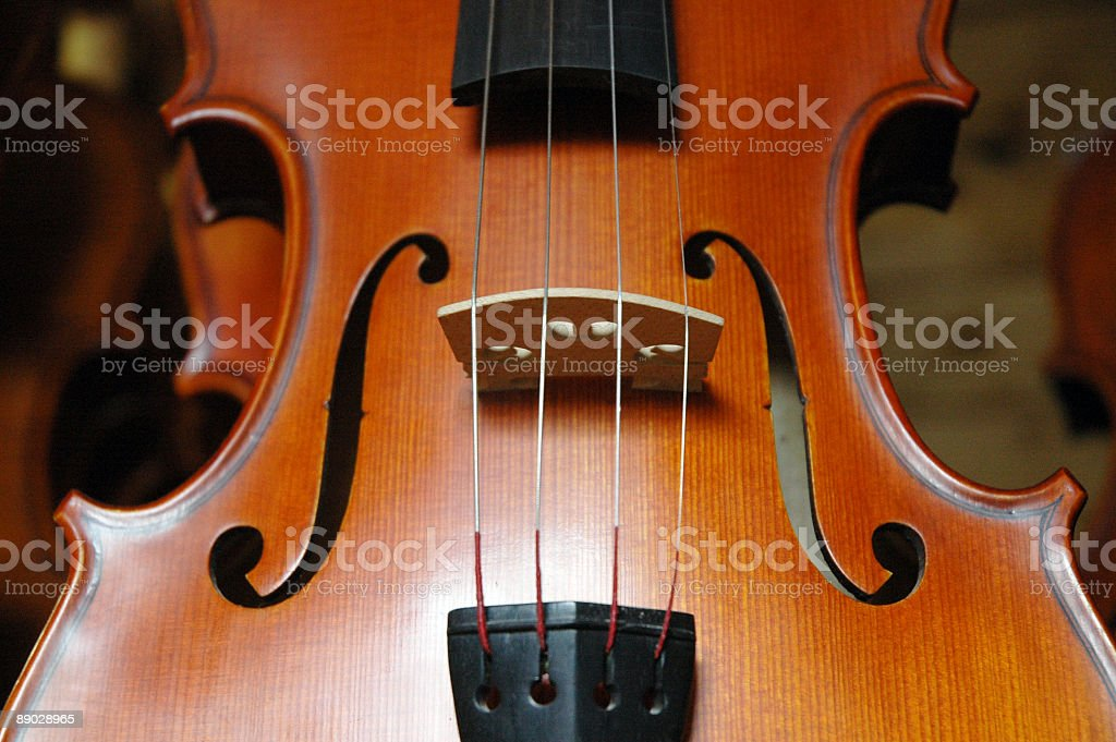 Musical curves royalty-free stock photo