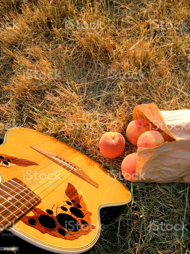 Musical Harvest royalty-free stock photo