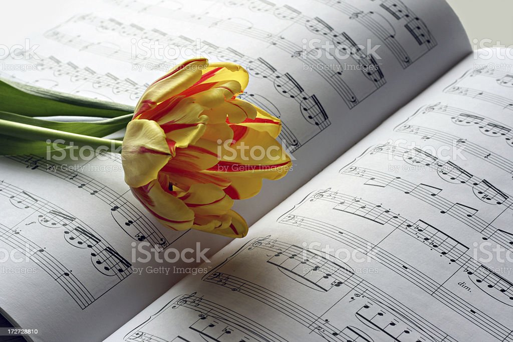musical note and tulip