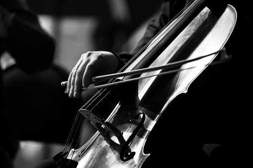 Musician hand playing the cello