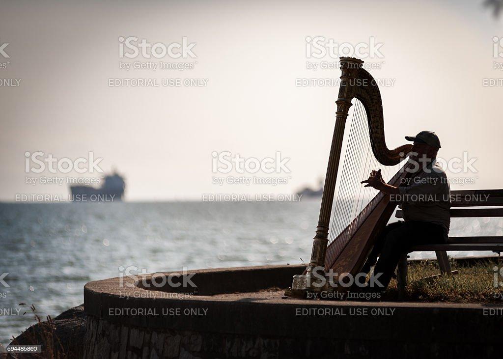 Musician harpist silhouette stock photo