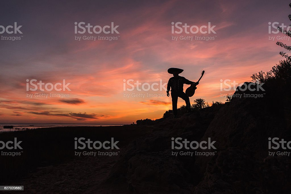 Musician on the coast. Mexican stock photo