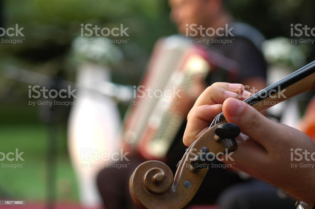 musician performance in garden party stock photo
