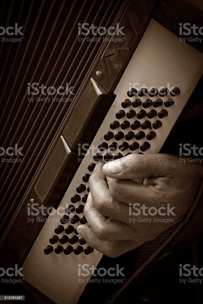 musician playing accordion stock photo