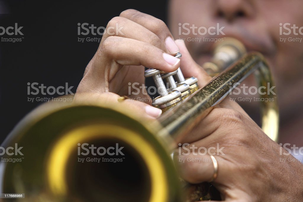Musician playing his instrument royalty-free stock photo