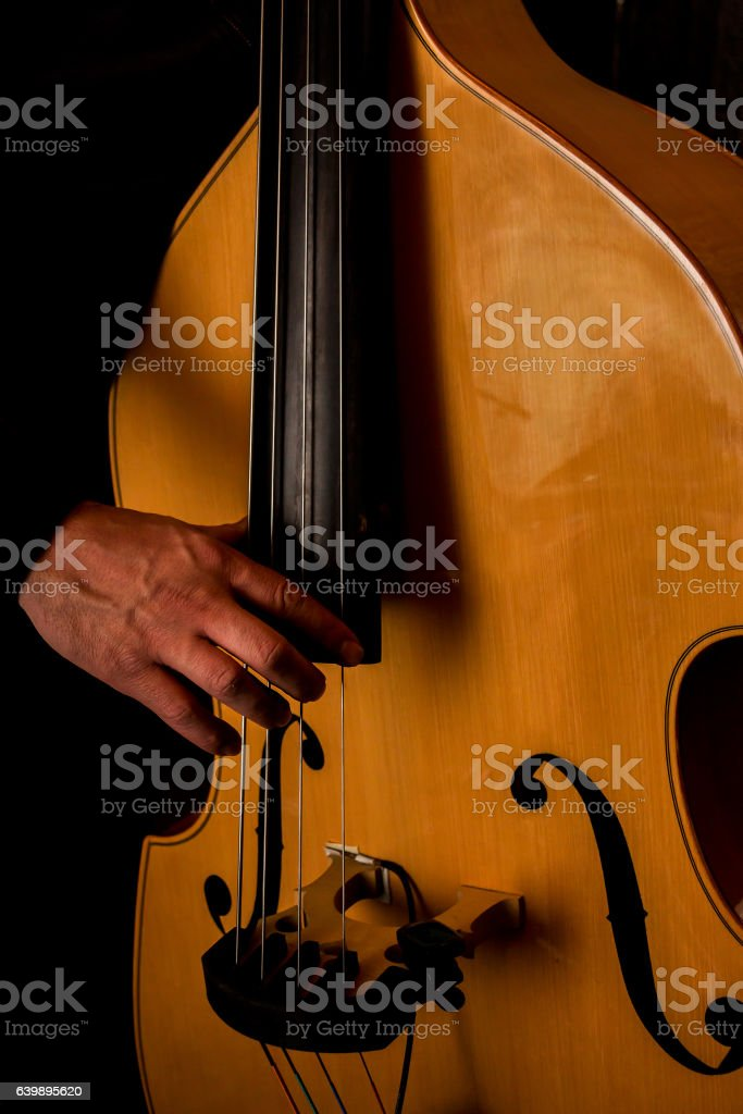 Musician plays the double bass. stock photo