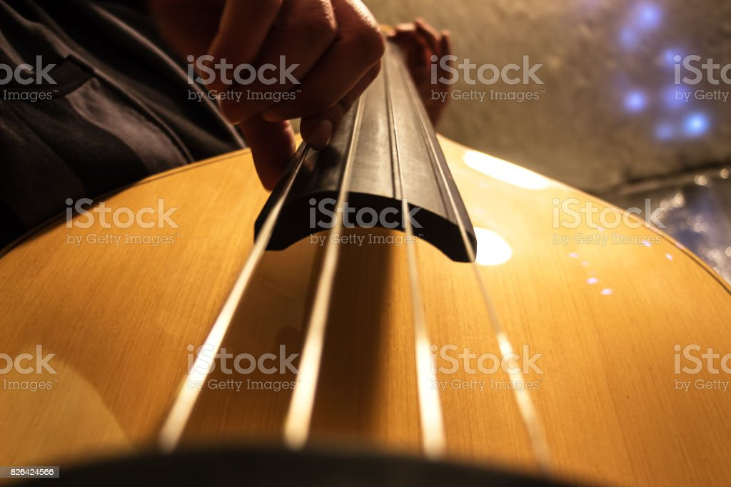 Musician plays the double bass stock photo