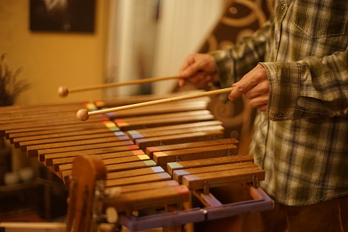 A musician plays the xylophone