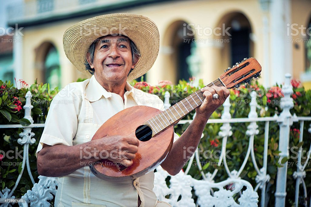 Musician with mandolin royalty-free stock photo