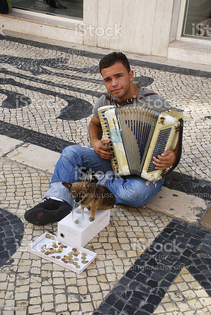 Musician With Small Cute Dog Play Accordion Stock Photo