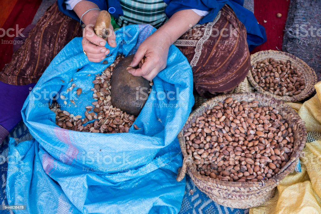 Muslim women making argan oil in traditional way in Morocco. Traditional production of argan oil used for cosmetics and in food preparation stock photo
