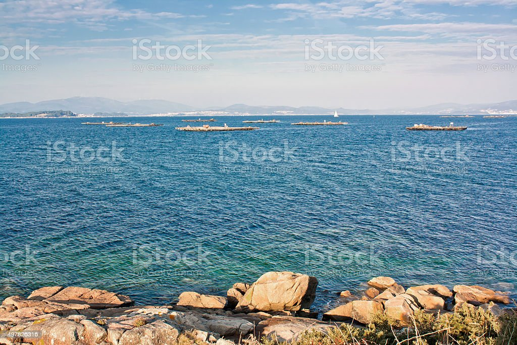 Mussel aquaculture rafts on landscape royalty-free stock photo