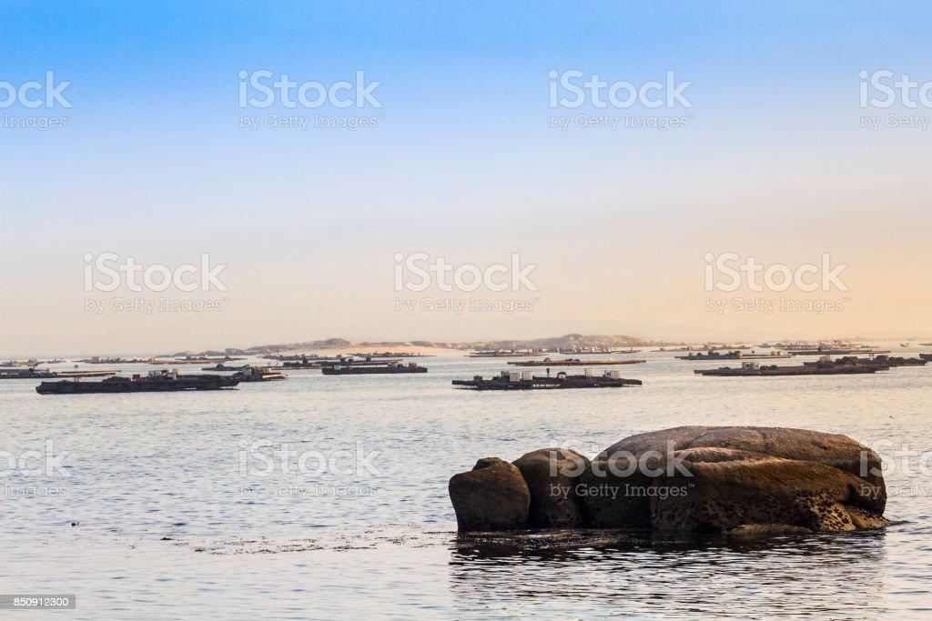 Balsas de la acuicultura del mejillón - foto de stock