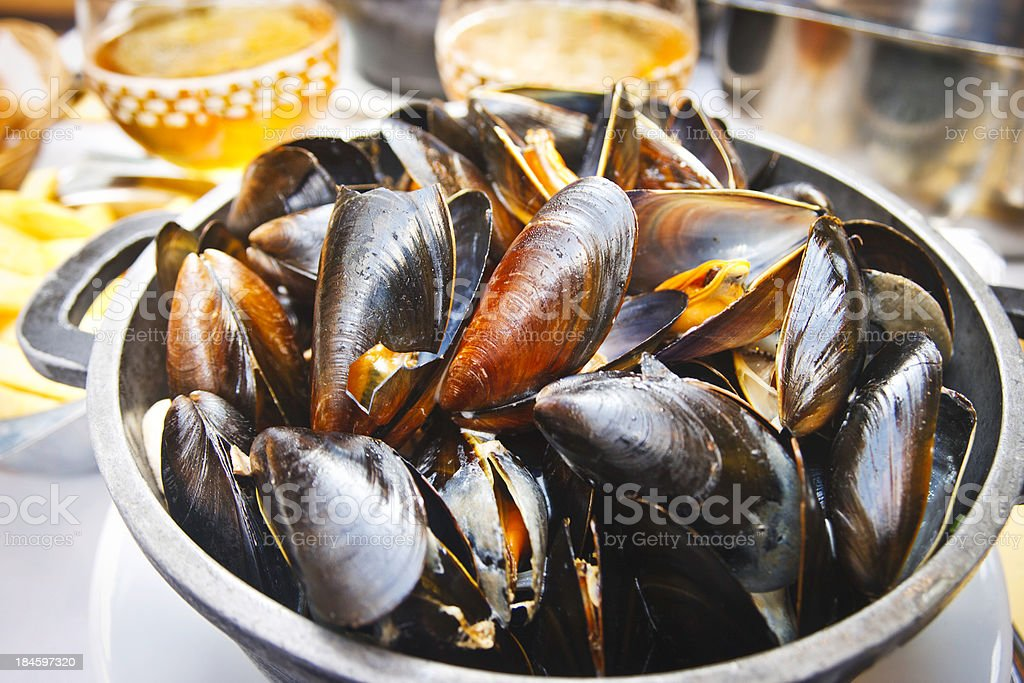 Mussels and beer stock photo