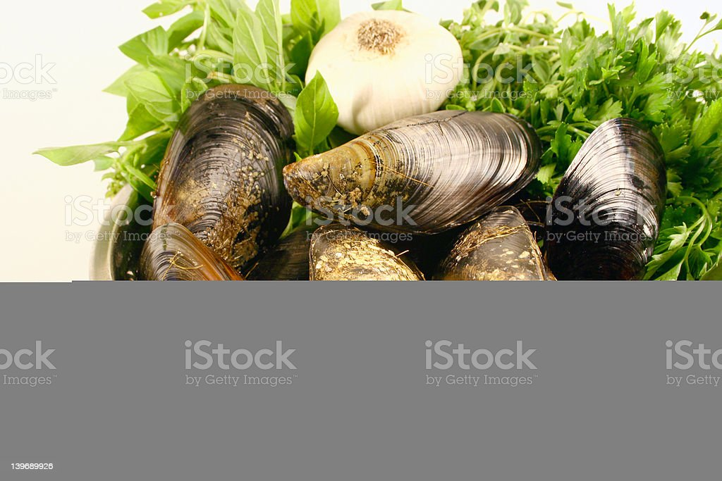mussels garlic and basil royalty-free stock photo