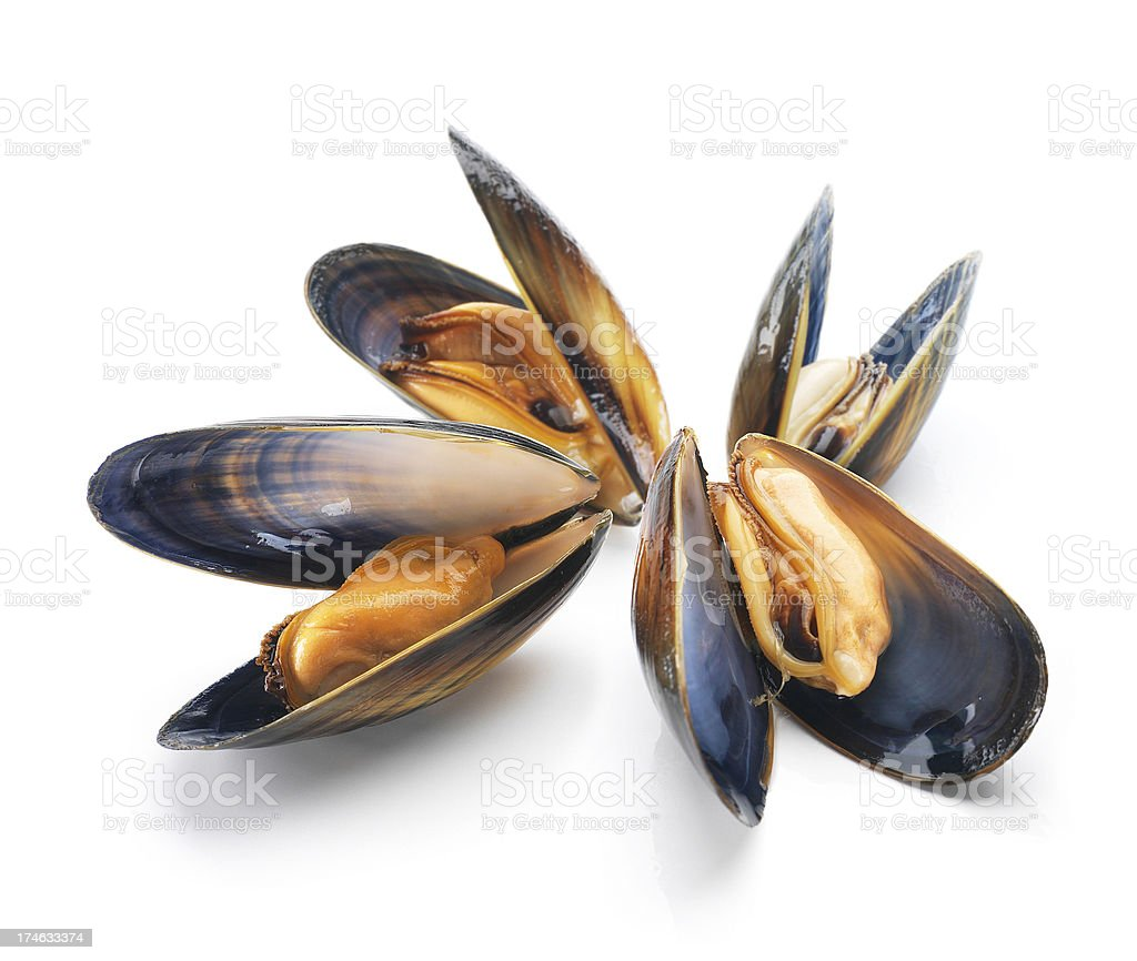 Mussels heap royalty-free stock photo
