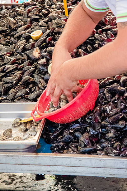 mussels in Catania city open market, Sicily stock photo