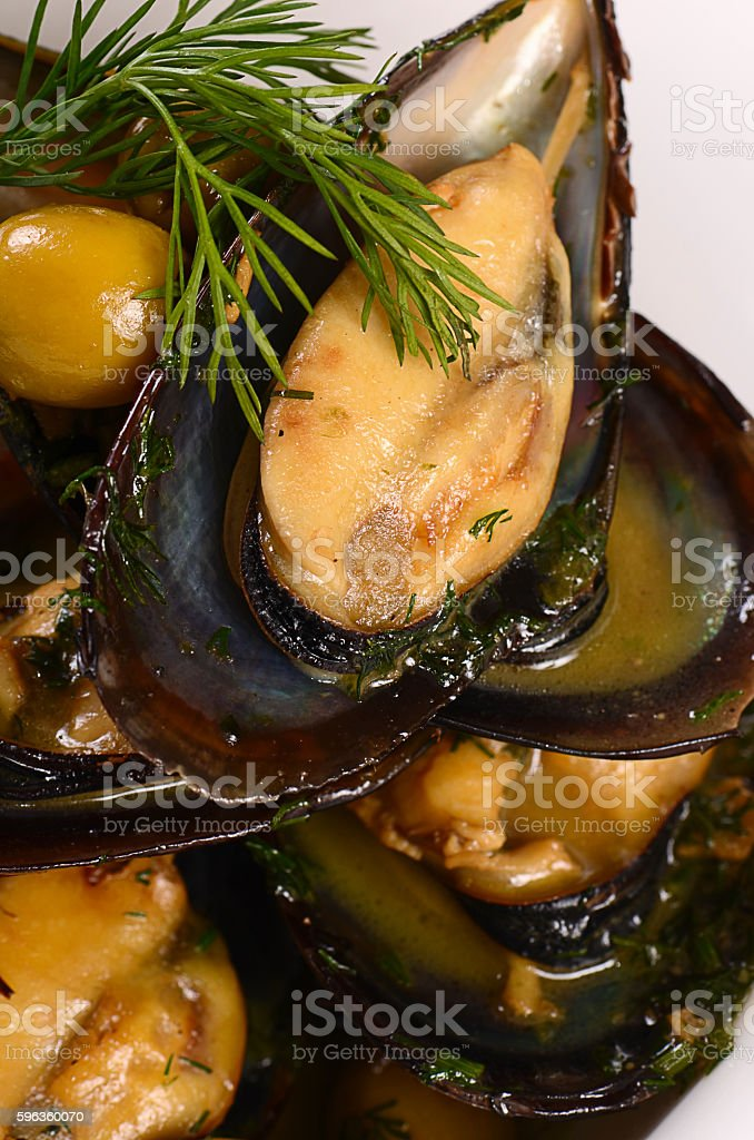Mussels in the shell with sauce royalty-free stock photo