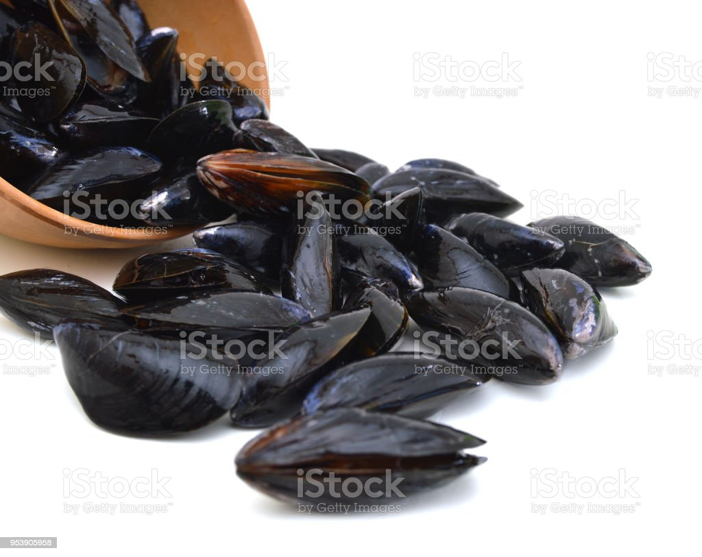 Mussels in wooden bowl on white stock photo