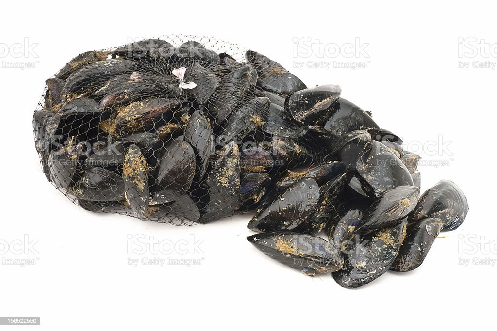 mussels over white royalty-free stock photo