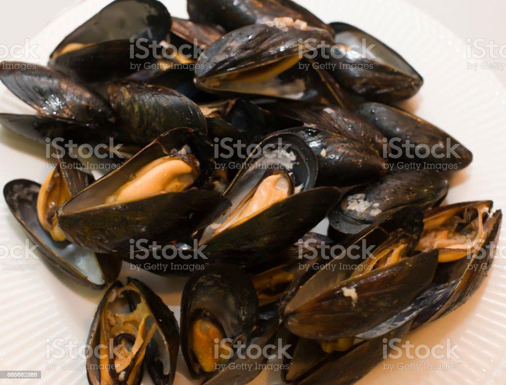 mussels 免版稅 stock photo