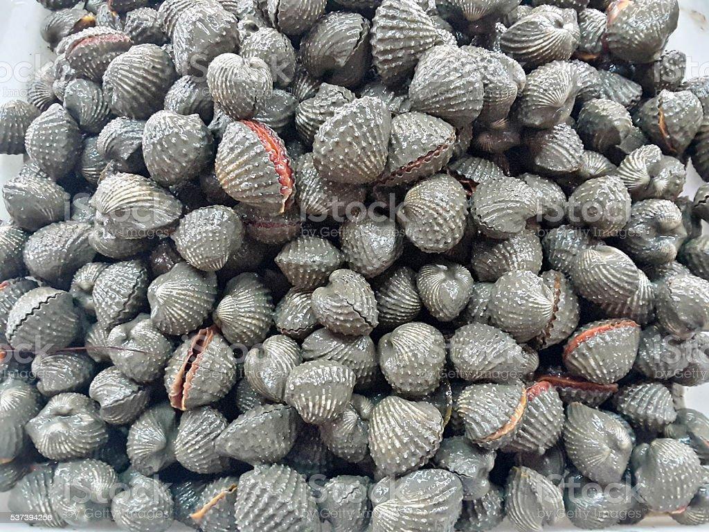 Необработанные морепродукты в рынке улитками стоковое фото