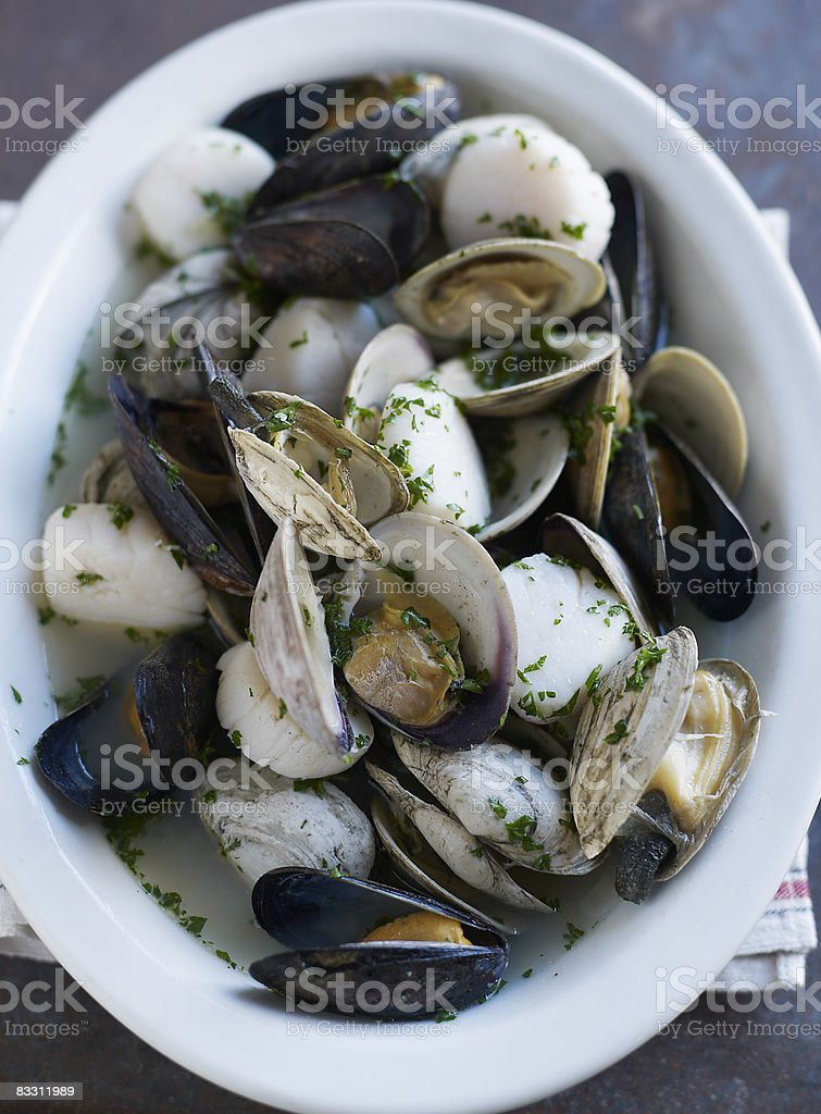 Mussels, scallops, clams in broth royalty free stockfoto
