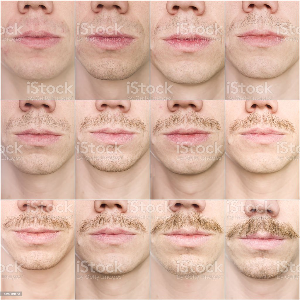 Mustache growing in 12 days royalty-free stock photo