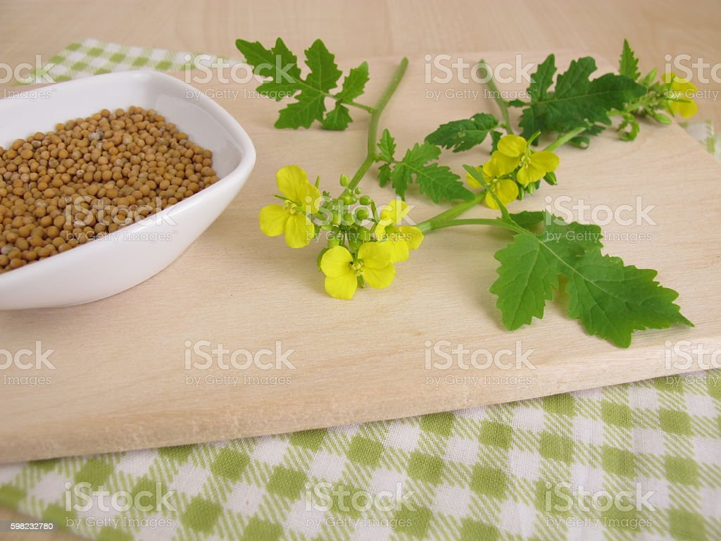 Mustard herbs with flowers and mustard seeds foto royalty-free