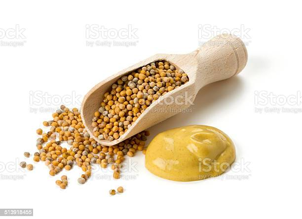 mustard isolated on white