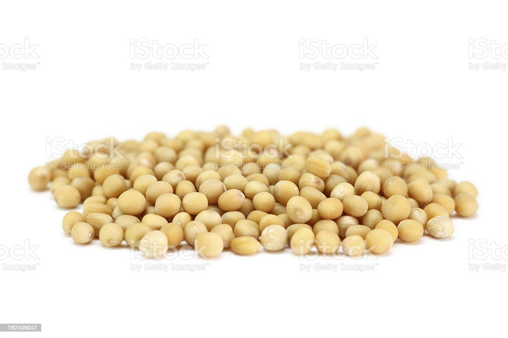 mustard seed isolated on white royalty-free stock photo