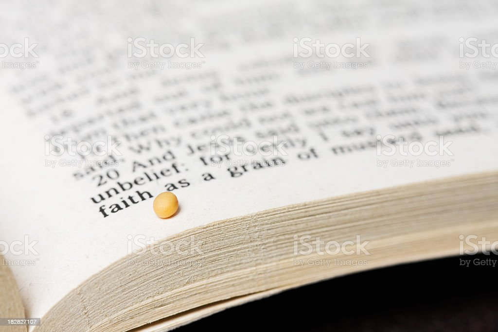 Mustard Seed of Faith and Bible Text royalty-free stock photo