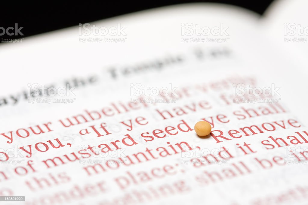Mustard Seed of Faith with Bible Text stock photo