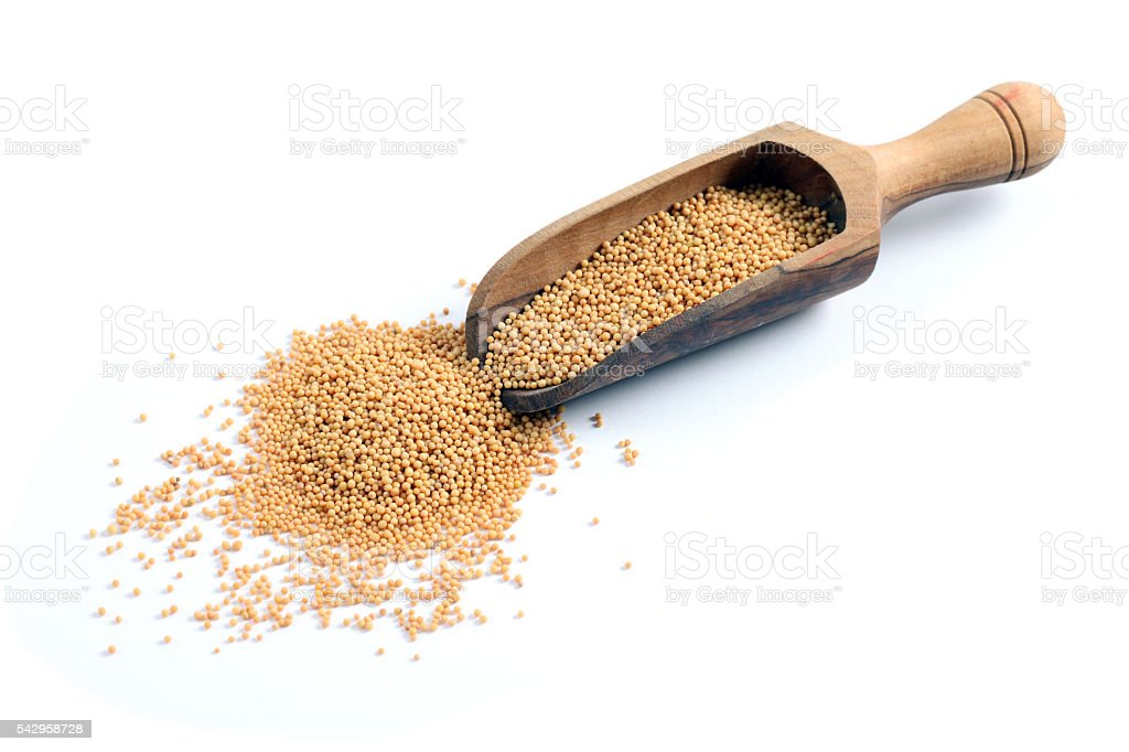 Mustard seeds on white background stock photo