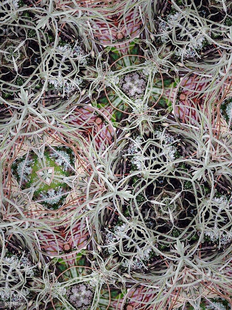 Mutant nature organic background with plant based shapes royalty-free stock photo