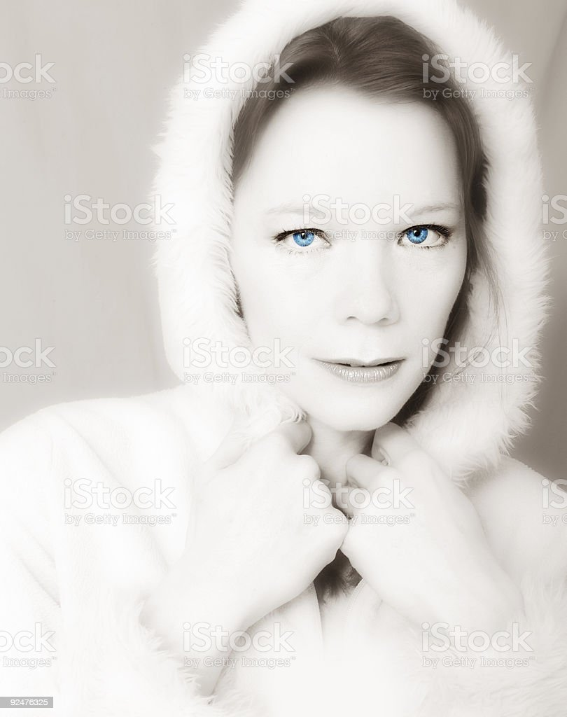 Muted Winter royalty-free stock photo