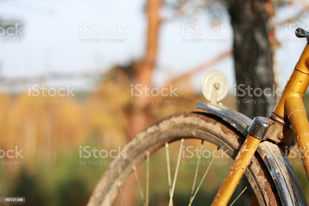 My bicycle stock photo