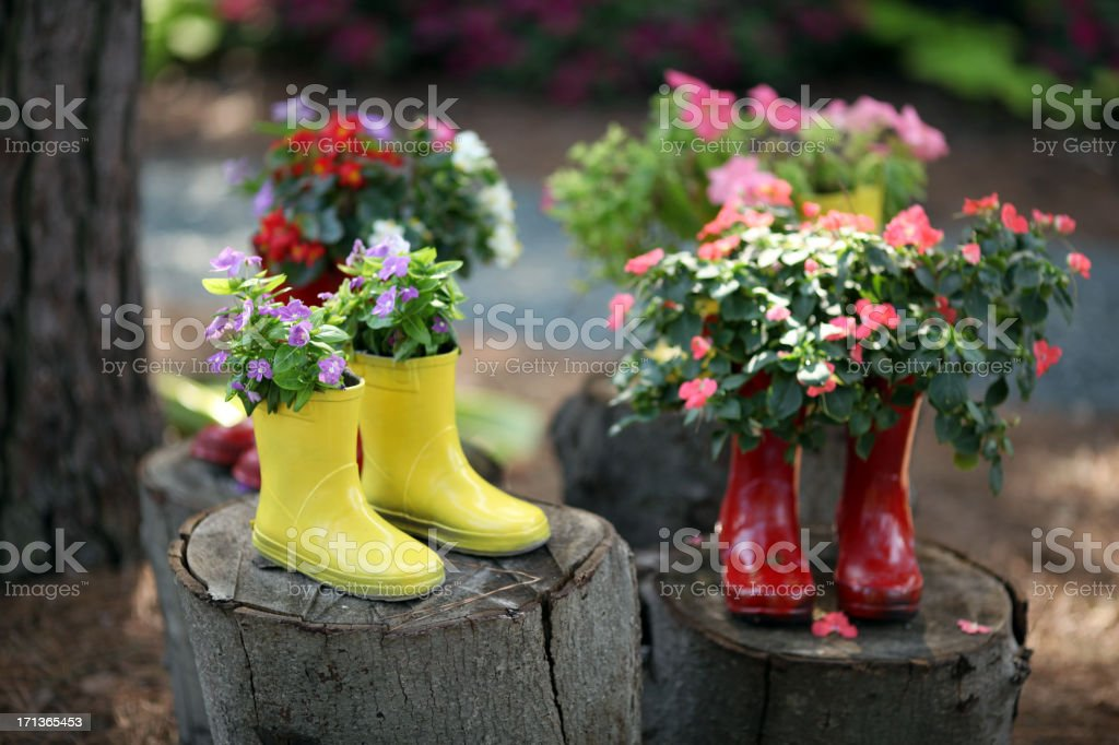 My Boots stock photo