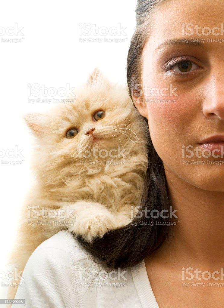 my cat royalty-free stock photo