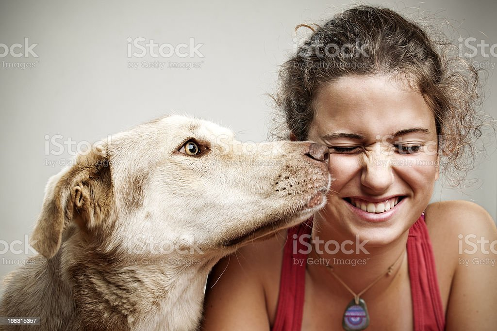 my dog stock photo